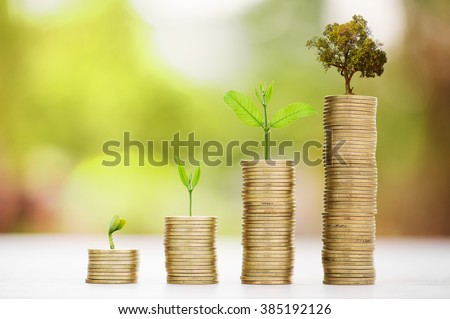Business Finance and Money concept, Money coin stack growing graph with green bokeh background,Trees growing on coin - stock photo