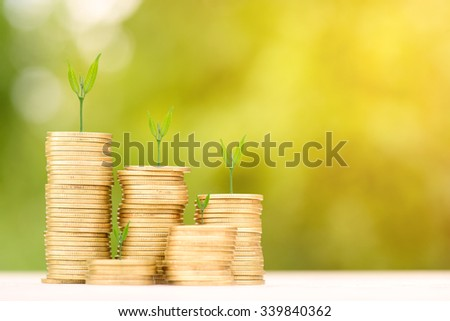 Business Finance and Money concept, Money Gold coin stack growing graph with green bokeh background,Trees growing on gold coin - stock photo