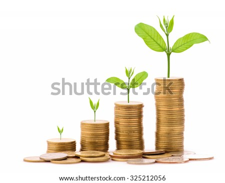 Business Finance and Money concept, Money Gold coin stack growing graph with white background,Plant growing on gold coin - stock photo