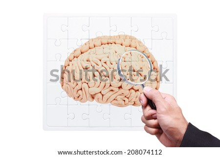 business hand searching success by magnifying glass on jigsaw concept of human brain  - stock photo