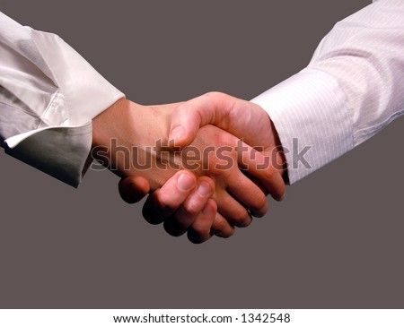 Business handshake ,woman and man , hands , concept - stock photo