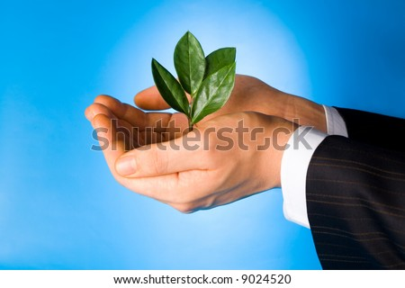 Business man holding a green plant in his hands on a blue background - stock photo