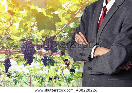 business man with wine grape fruit background