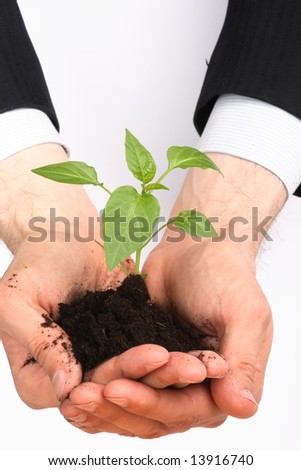 business men,  plant