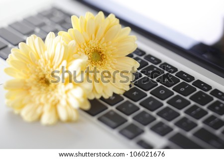 Business scene - stock photo