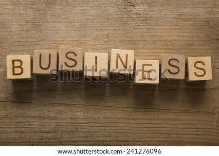 business text on a wooden blocks - stock photo