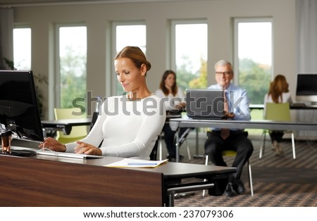 Business woman sitting in front of computer while working on financial plan.  - stock photo