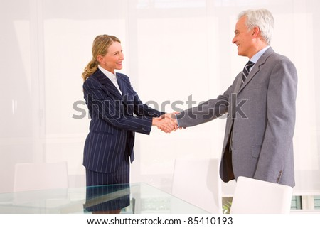 businessman and businesswoman meet and shaking hands