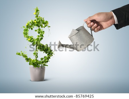 Businessman and watering pot  (path in side) - stock photo