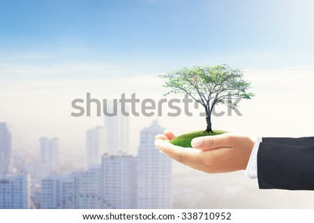 Businessman hand holding big plant with meadow on blurred city background. Sustainable Energy and Business, Ecology, World Environment Day, Investment concept. - stock photo