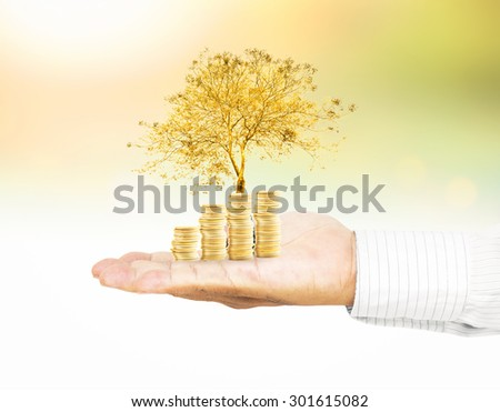 Businessman hand holding golden coins with medium plant or big tree over beautiful nature background. Seedling in coin Money LIT Investment Saving Banking Agent Fund ROI CSR Finance Protecting concept - stock photo