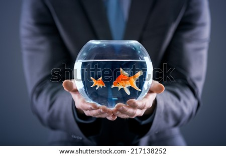businessman holding small and big gold fish together in the fishbowl - stock photo