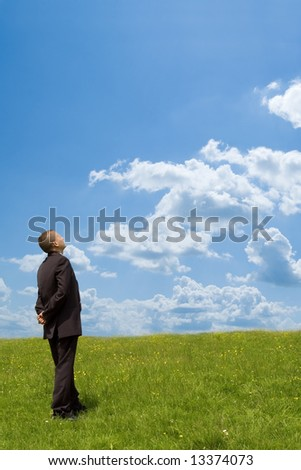 businessman in suit on grass field - stock photo