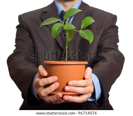 Businessman is holding a plant in pot. Isolated on white - stock photo