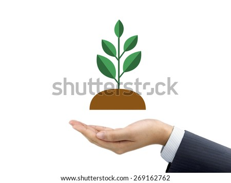 businessman's hand holding plant isolated on white background - stock photo