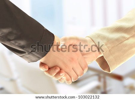 businessman's hand shaking white businessman's hand - stock photo