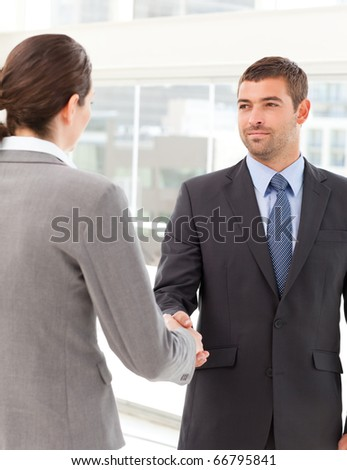 Businessman shaking hands with a businesswoman during a meeting