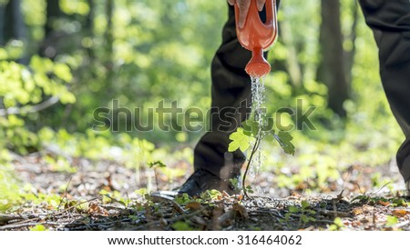 Businessman standing over a green plant in a forested area watering it with a toy can, focus to the plant. Conceptual of business vision, growth and start up.