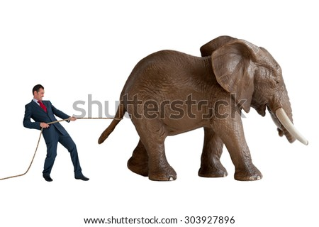 businessman trying to restrain an elephant - stock photo