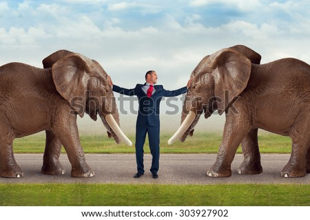 businessman trying to restrain an elephant subtle movement and vintage filter  - stock photo