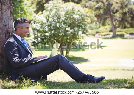 Businessman using laptop in the park on a sunny day - stock photo