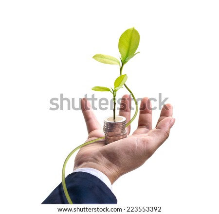 Businessman with tree and coins on hand white background