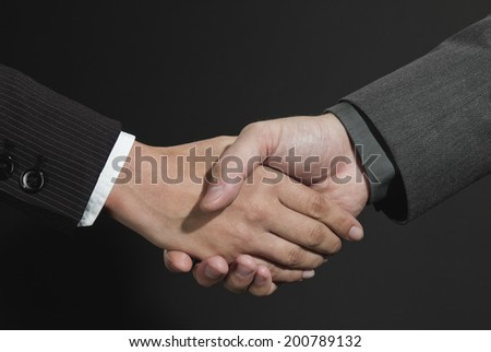 Businesspersons shaking hands - stock photo