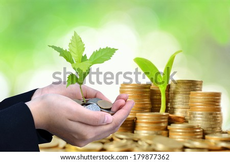 Businesswoman hand holding young tree growing from pile of coins money with green background - stock photo