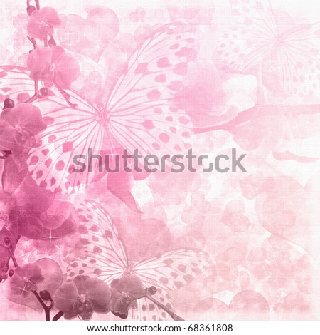 Butterflies and orchids flowers  pink background - stock photo
