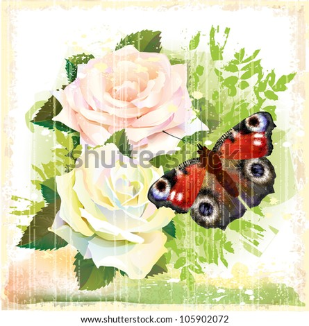 Butterfly and roses - stock photo