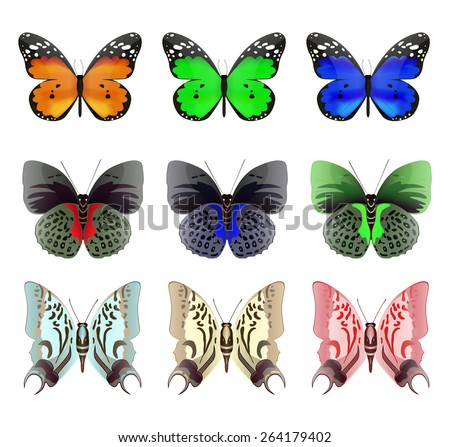 Butterfly. Colored set.  Isolated on white background. Raster version