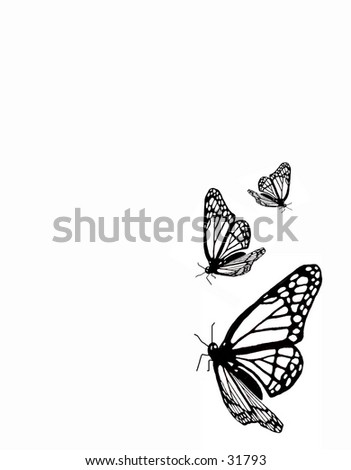 butterfly line art - stock photo