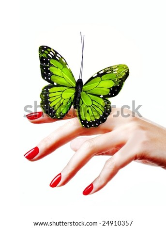Butterfly on woman's hand - stock photo