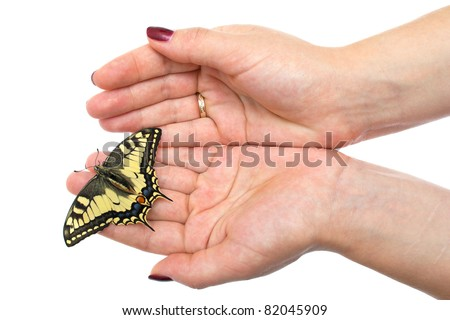 Butterfly sitting on hands