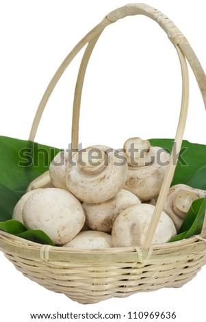 Button mushroom on a bamboo basket - stock photo