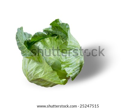 Cabbage in a white background(with path)