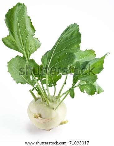 Cabbage kohlrabi on a white background - stock photo