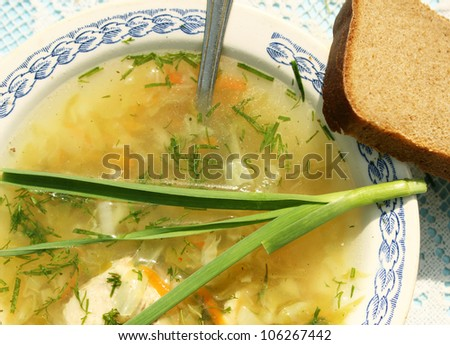 Cabbage soup - stock photo