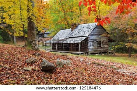 Cabin - stock photo