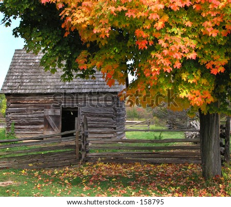 Cabin and Fall Colors - stock photo