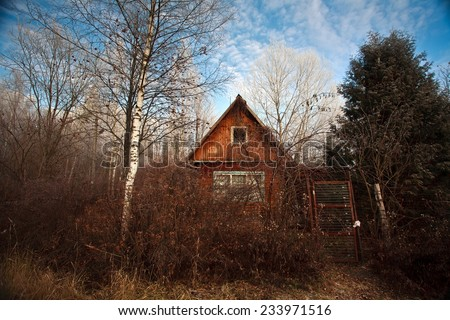 cabin in forest  - stock photo