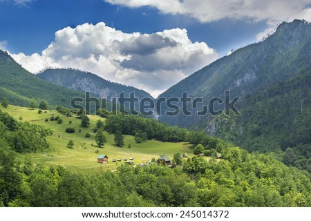 cabin in the mountains summer cloudy sky tree green nature