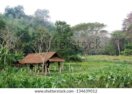 Cabin in the woods  - stock photo