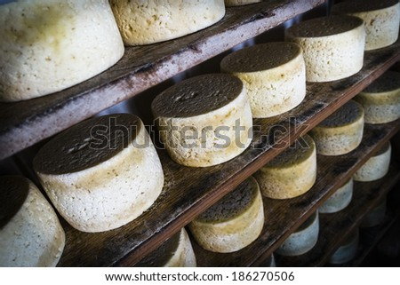 Cabrales cheese maker, at Sotres, Asturias, Spain - stock photo