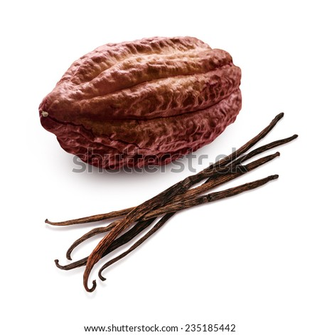 Cacao and vanilla pods isolated on a white background - stock photo