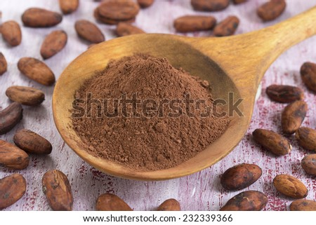 cacao bean and cacao powder in wooden spoon - stock photo