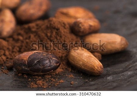 cacao beans and cacao powder in spoon - stock photo
