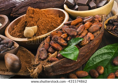 Cacao beans and powder, cacao butter and cacao nibs and chocolate on a wooden background - stock photo