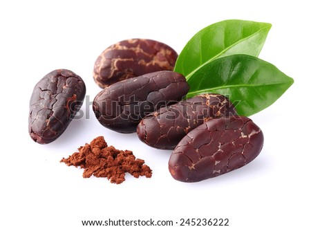 Cacao beans with cacao powder - stock photo