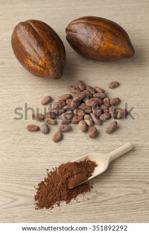 Cacao fruit, cocoa beans and cocoa powder on a wooden spoon - stock photo